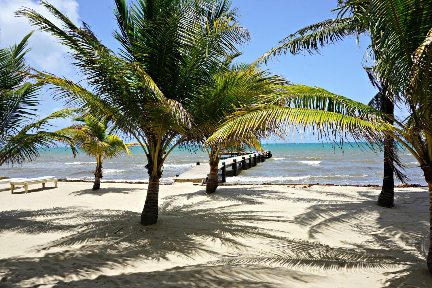 Central America: Exploring The Top 5 Things To Do in Belize