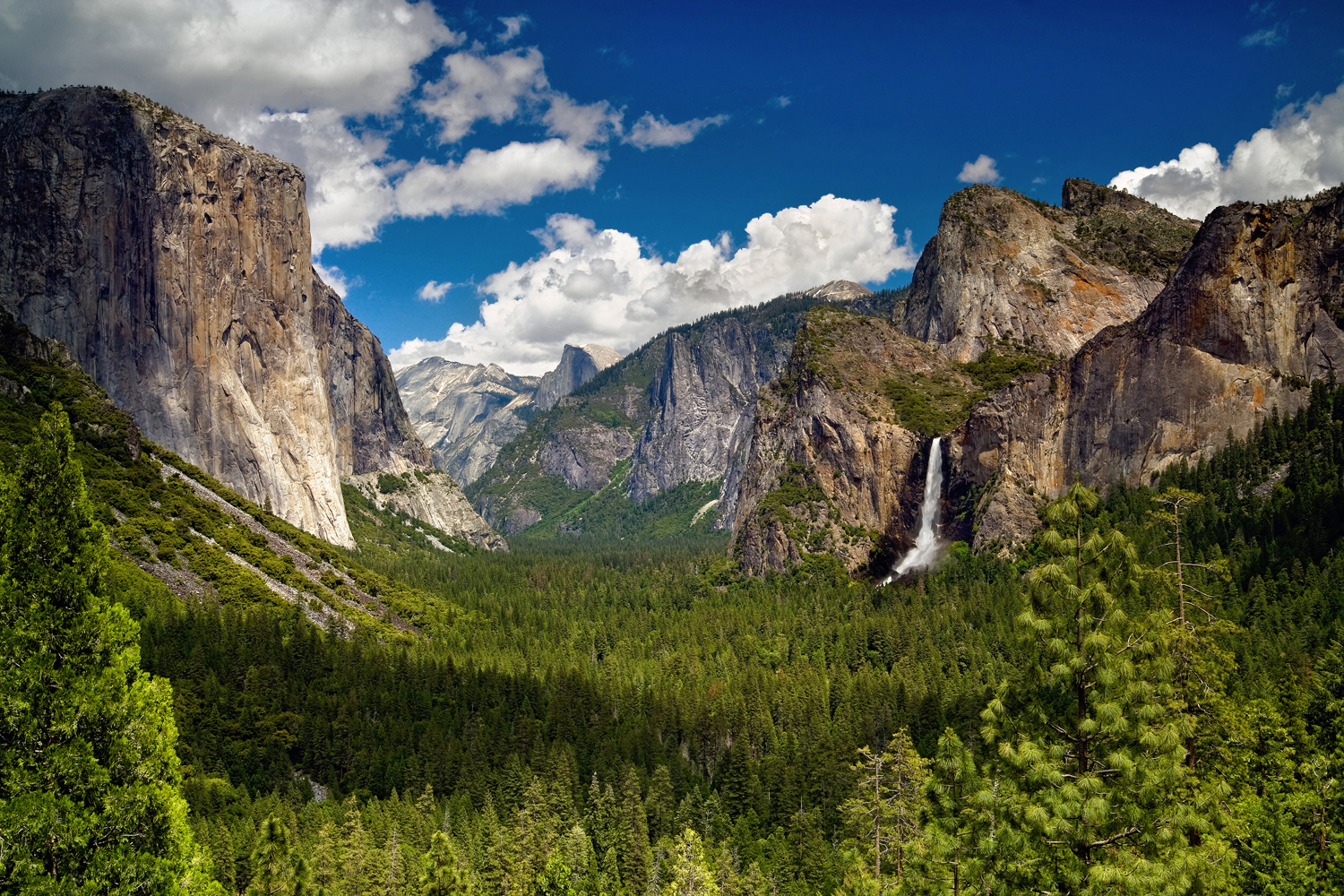 Visit Yosemite This Spring for Waterfalls and Wildflowers