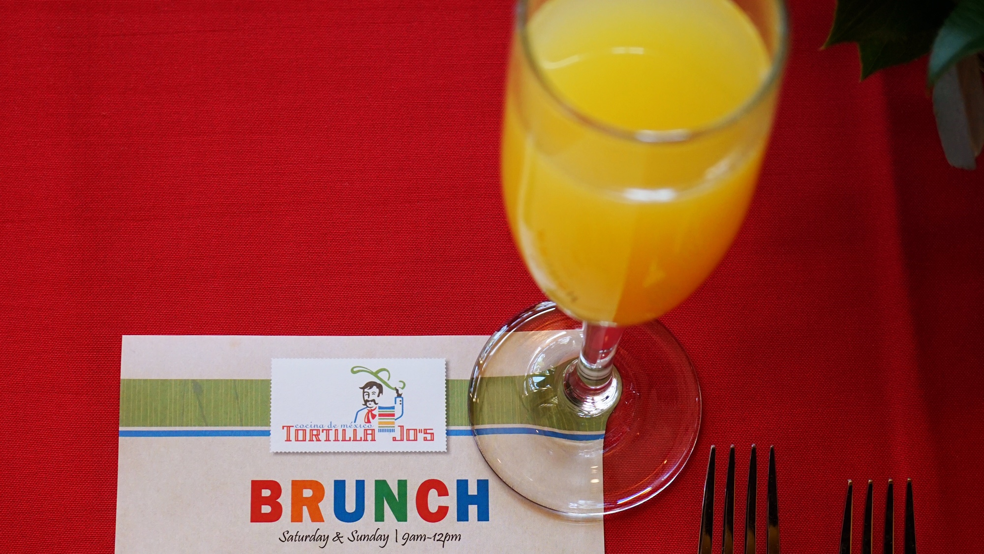 Exploring Tortilla Jo's Bottomless Mimosa Brunch in Downtown Disney