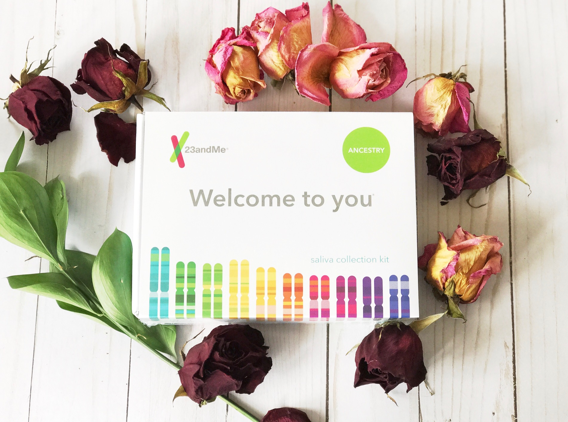 What I Discovered From 23andMe – DNA Genetic Testing